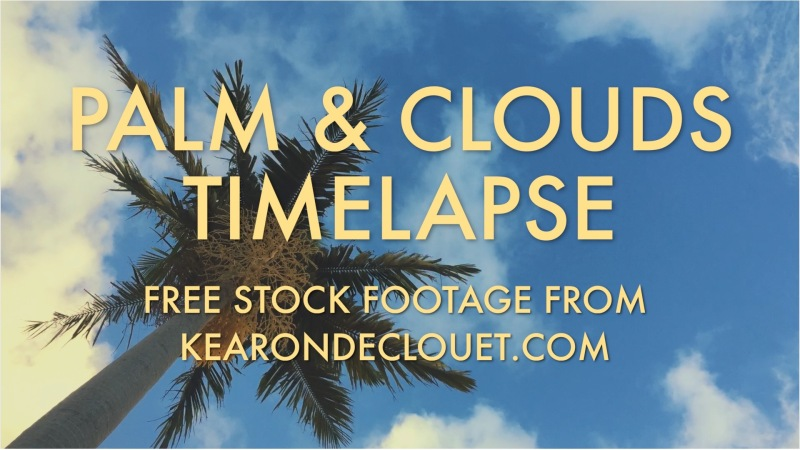 Free Stock Footage – Palm and CloudsTimelapse